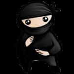 System Ninja 3.2.1 portable
