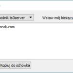 teamspeak_4