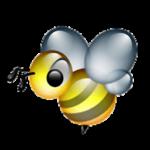 BeeBEEP 4.0.0 portable