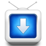 Wise Video Downloader 2.45 portable
