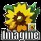 Imagine 1.1.0 portable