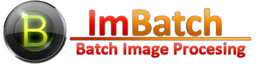 ImBatch_logo2