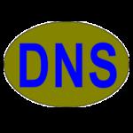 DNSDataView 1.55 portable